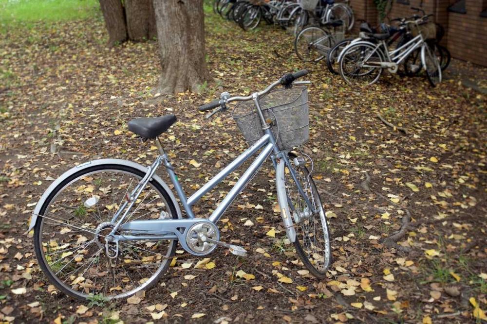 Japan Bicycle - 10