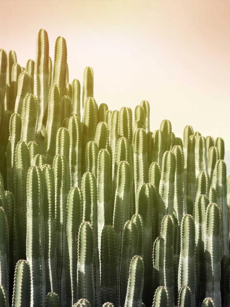 kunstdrucke leinwandbilder bis xxl online kaufen galerie munk greer lexie. Black Bedroom Furniture Sets. Home Design Ideas