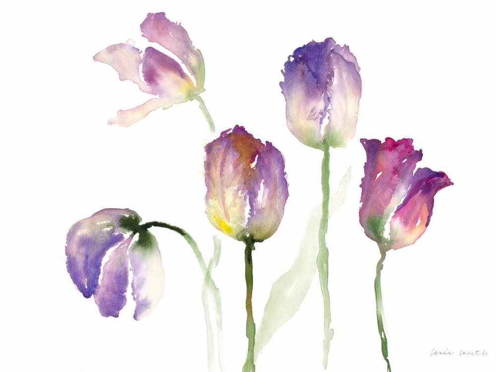 Lavender Hues Tulips II