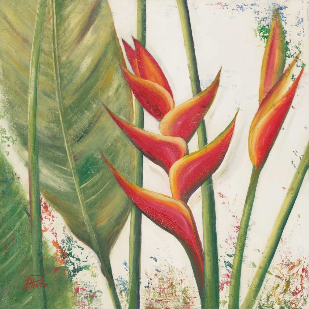 Heliconias With Leaves II