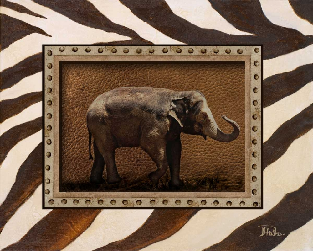 New Zebra Inspiration I