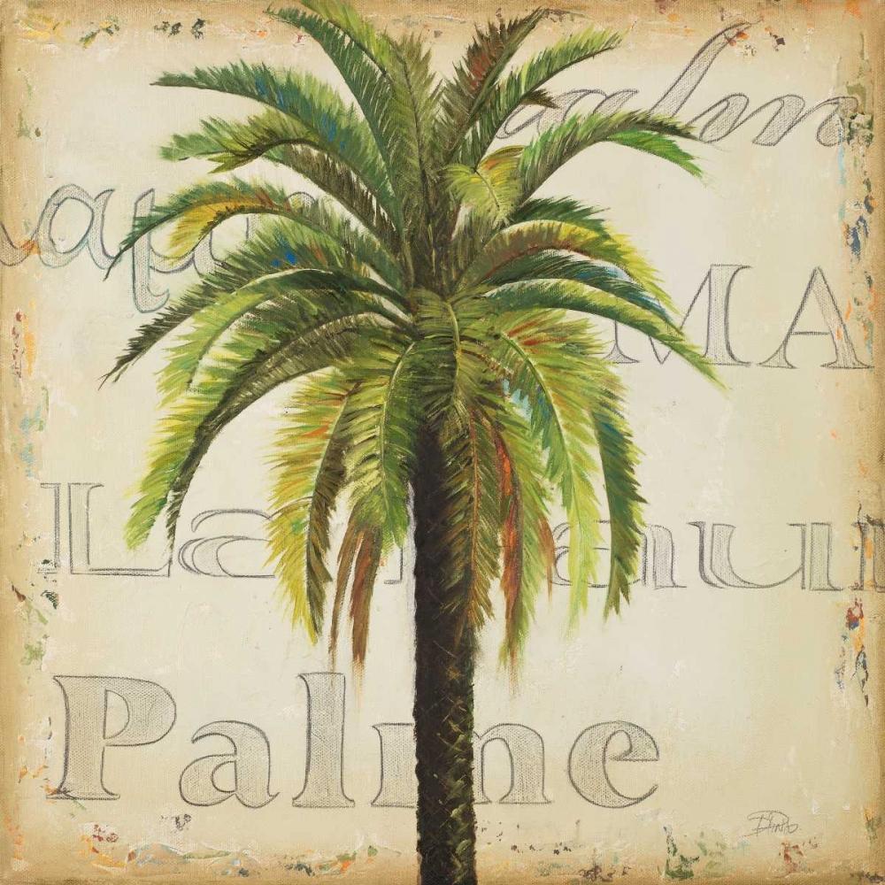 La Palma III