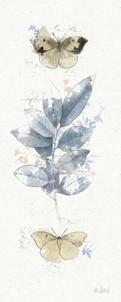 Floresta VII