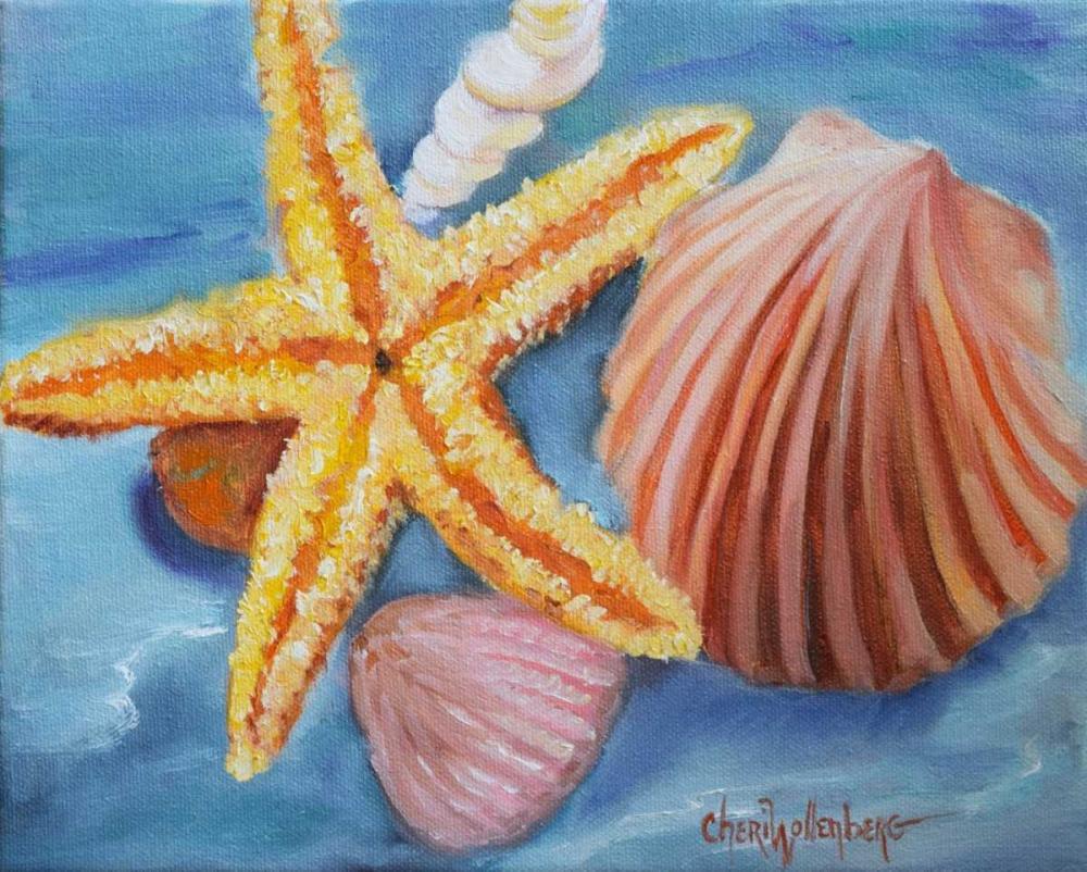 мягкая, рисунок ракушек и морских звезд замкнутый скрытный