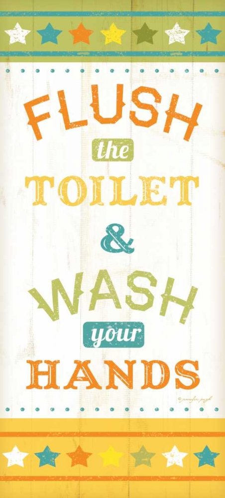 Flush and Wash