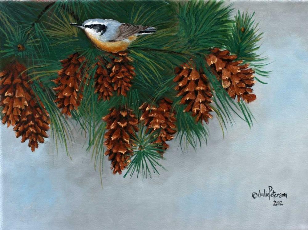 Pine Cones Nuthatcher