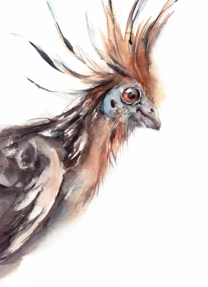 Ruffled Feathers III