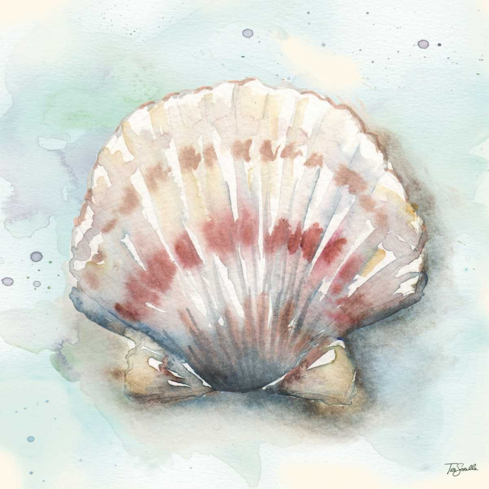 Watercolor Shells VI