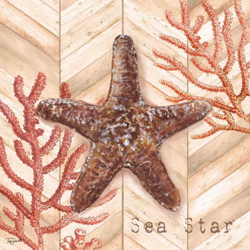 Chevron Shells Coral III