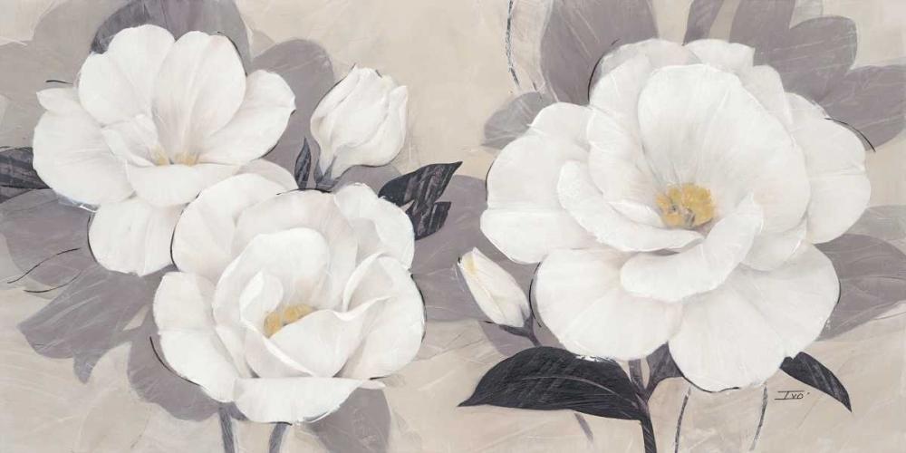 Unfolding Blossoms