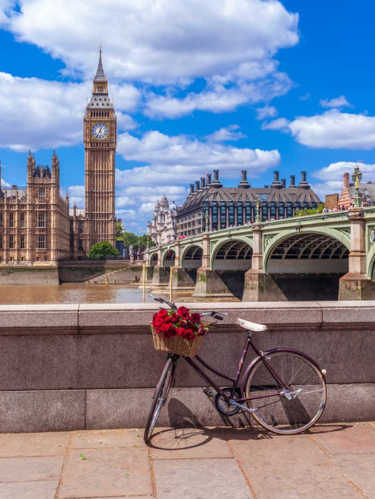 Bunch of Roses on a bicycle agaisnt Westminster Abby, London, UK