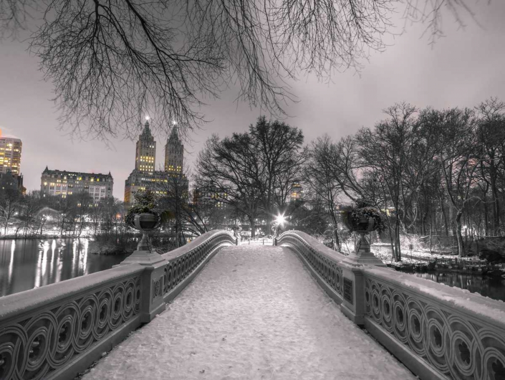 Central park Bow Bridge with Manhattan skyline, New York