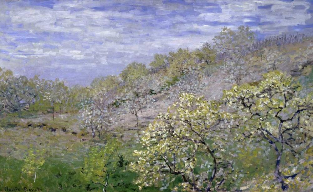 Trees in Bloom - Arbres en fleurs