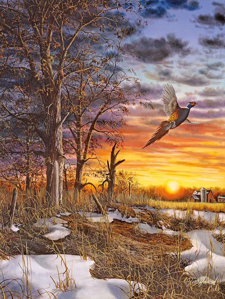 Jim Hansel: kunstwerken van de kunstenaar