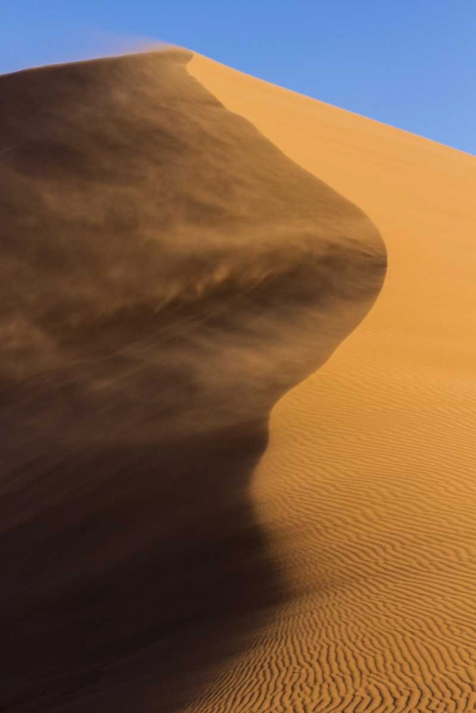 Namibia, Namib-Naukluft NP Blowing sand on dune