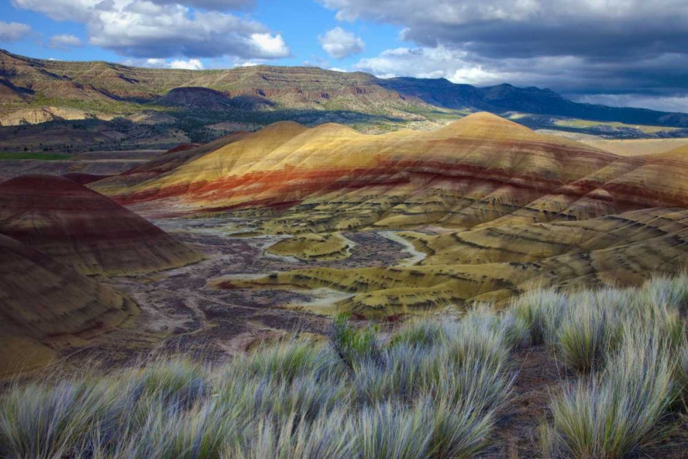 Oregon, John Day Fossil Beds NM, Painted Hills