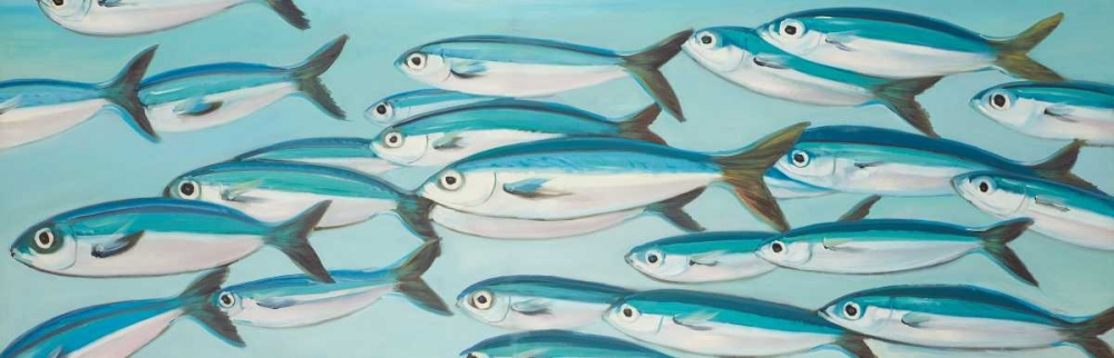 Small Fishs of Caesio Caerulaurea