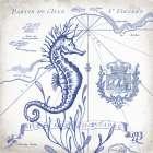 Seahorse on White I
