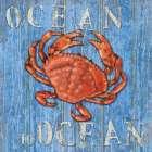 Coastal USA Red Crab