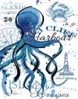 Sea Cliff Octopus