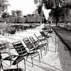 Jardin des Tuileries II