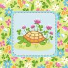 Meadow Turtle II