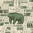 Bear Typography