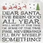Dear Santa Nevermind clean