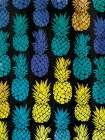 Multi Pineapples