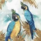 Golden Parrots