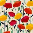 Cheerful Poppies