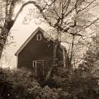 Bough and Barn