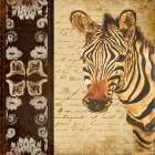 Madagascar Safari IV