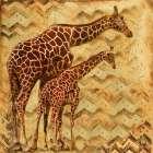 Safari Family II
