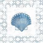 Navy Scallop Shell on Newsprint