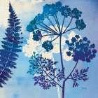 Blue Sky Garden II