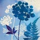 Blue Sky Garden IV