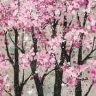 Spring Theme