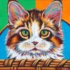 Kitten in Basket II