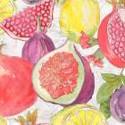 Fruit Medley I