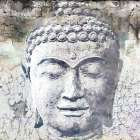 Timeless Buddha I