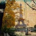 Eiffel Romance III