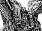 Desert Arches IV