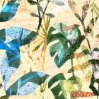Technicolor Jungle IV