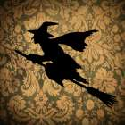 Witch and Damask