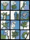 Asure Botanical II 12-Patch