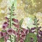 Foxglove Meadow I