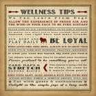 Wellness Tips II