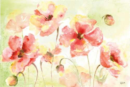 Pale Pink Poppies Landscape