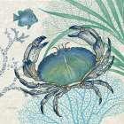 Oceana Indigo Sea Life II